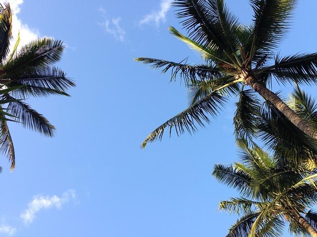hawaii-801293_640.jpg