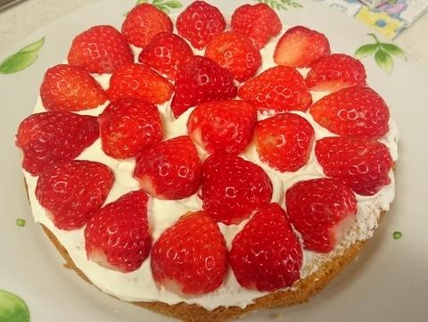17.03.27いちごのショートケーキ10