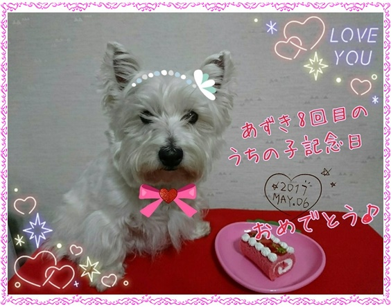 azuki_20170507021516a06.jpg