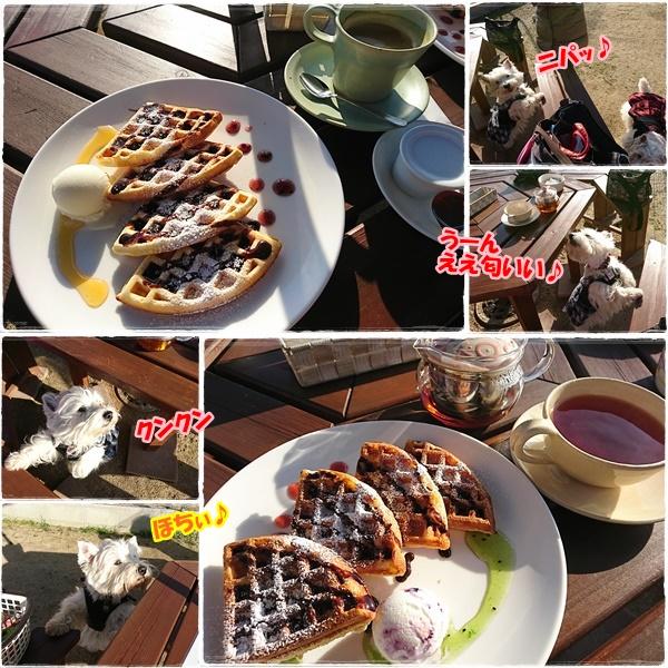 cafe8_20170228133906c40.jpg