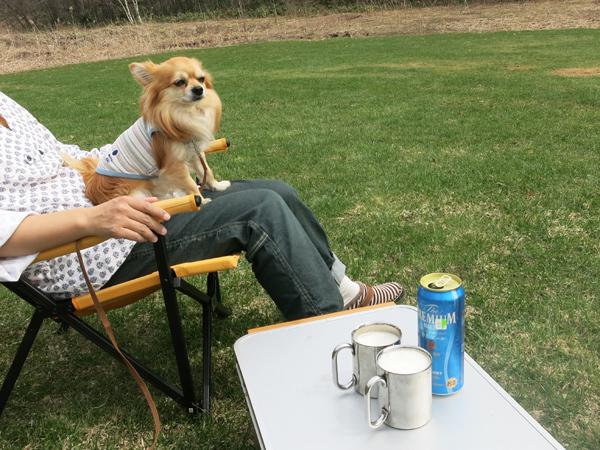 ファミリーパークゴルフ追分キャンプ場 ビール