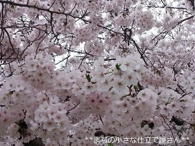 20170409_105552.jpg