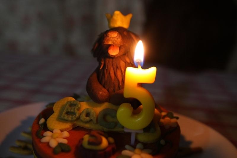 5歳ばちゅ3