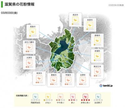 滋賀県の花粉情報(3月3日6時)