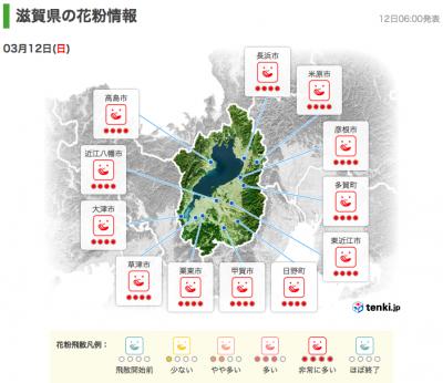 滋賀県の花粉情報(3月12日6時)