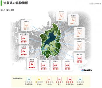 滋賀県の花粉情報(4月12日6時)