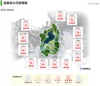 滋賀県の花粉情報(4月13日6時)