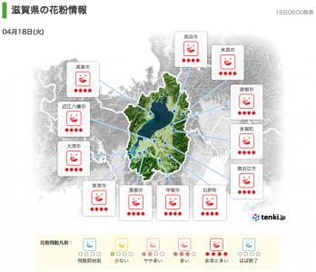 滋賀県の花粉情報(4月18日6時)