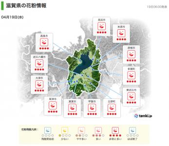 滋賀県の花粉情報(4月19日6時)