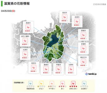 滋賀県の花粉情報(4月23日6時)