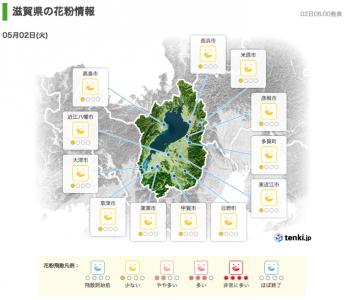 滋賀県の花粉情報(5月2日6時)