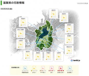 滋賀県の花粉情報(5月5日6時)
