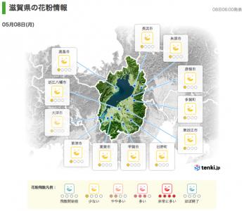 滋賀県の花粉情報(5月8日6時)