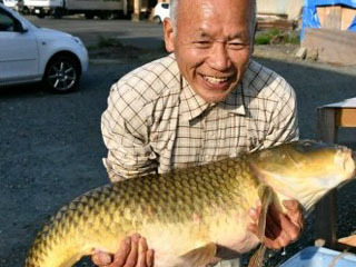 筑後川で捕獲された1.2m 16.9kgのコイ