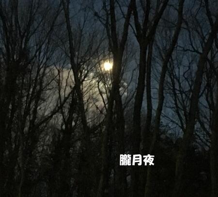 2017-03-14-1.jpg