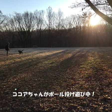 2017-03-16-3.jpg