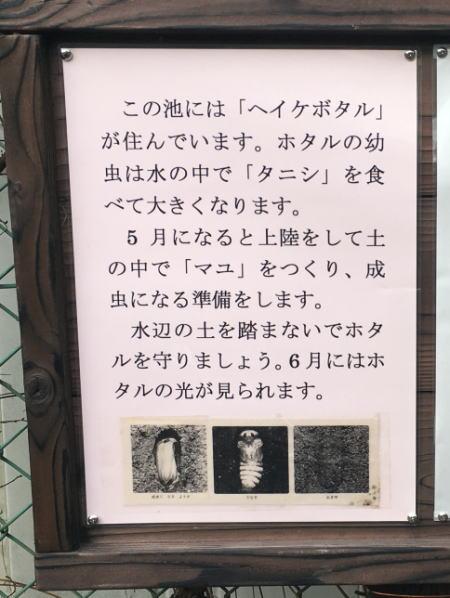 2017-04-27-10.jpg