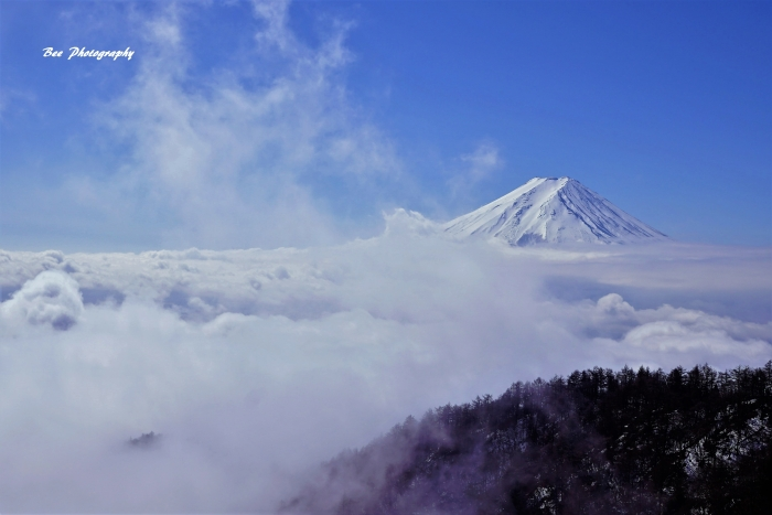bee-富士山-三つ峠9430