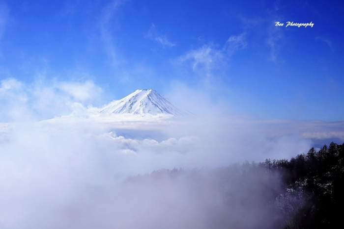 bee-富士山-三つ峠9436