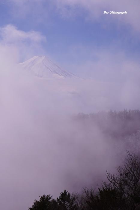 bee-富士山-三つ峠9454-2