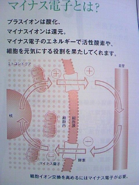 SN3C0309 (2)