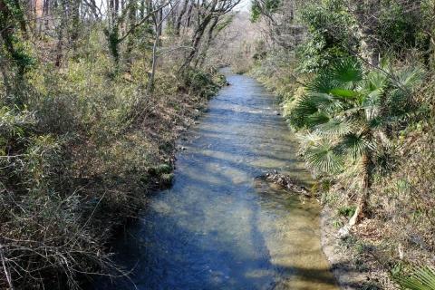 36渡良瀬川河原へ