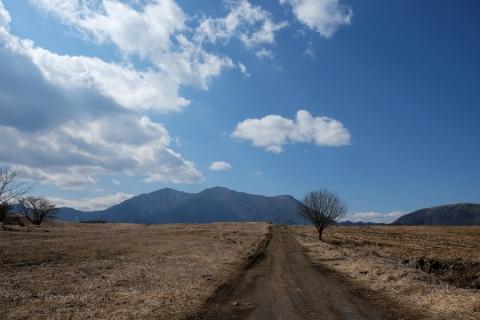 32富士ケ嶺付近から毛無山を望む