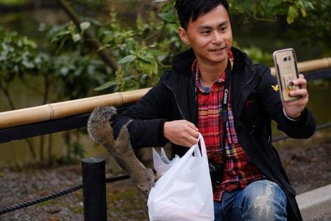 19台湾リス