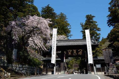 11久遠寺山門