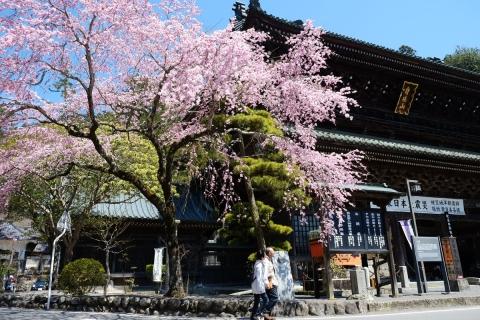 13久遠寺総門