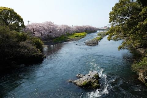 03潤井川
