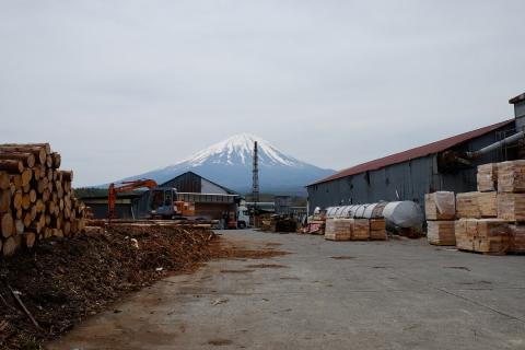 05河口湖町の富士山