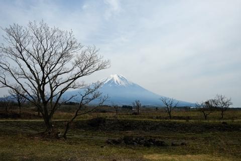 14朝霧高原富士山