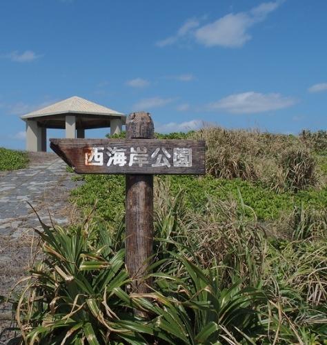 2017.3.3宮古島36