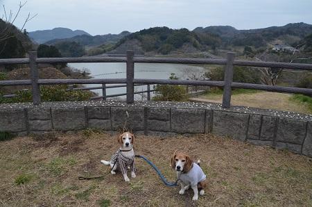 20170227佐久間ダム親水公園07