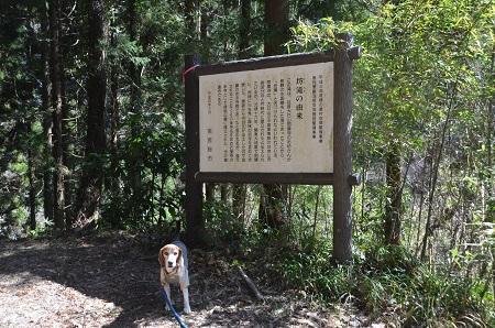 20170309増間七つ滝 坊滝09