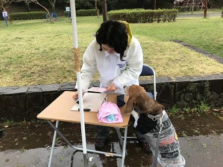20170411狂犬病予防接種07