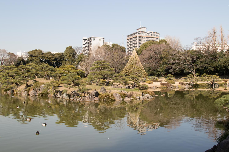 20170216-清澄庭園