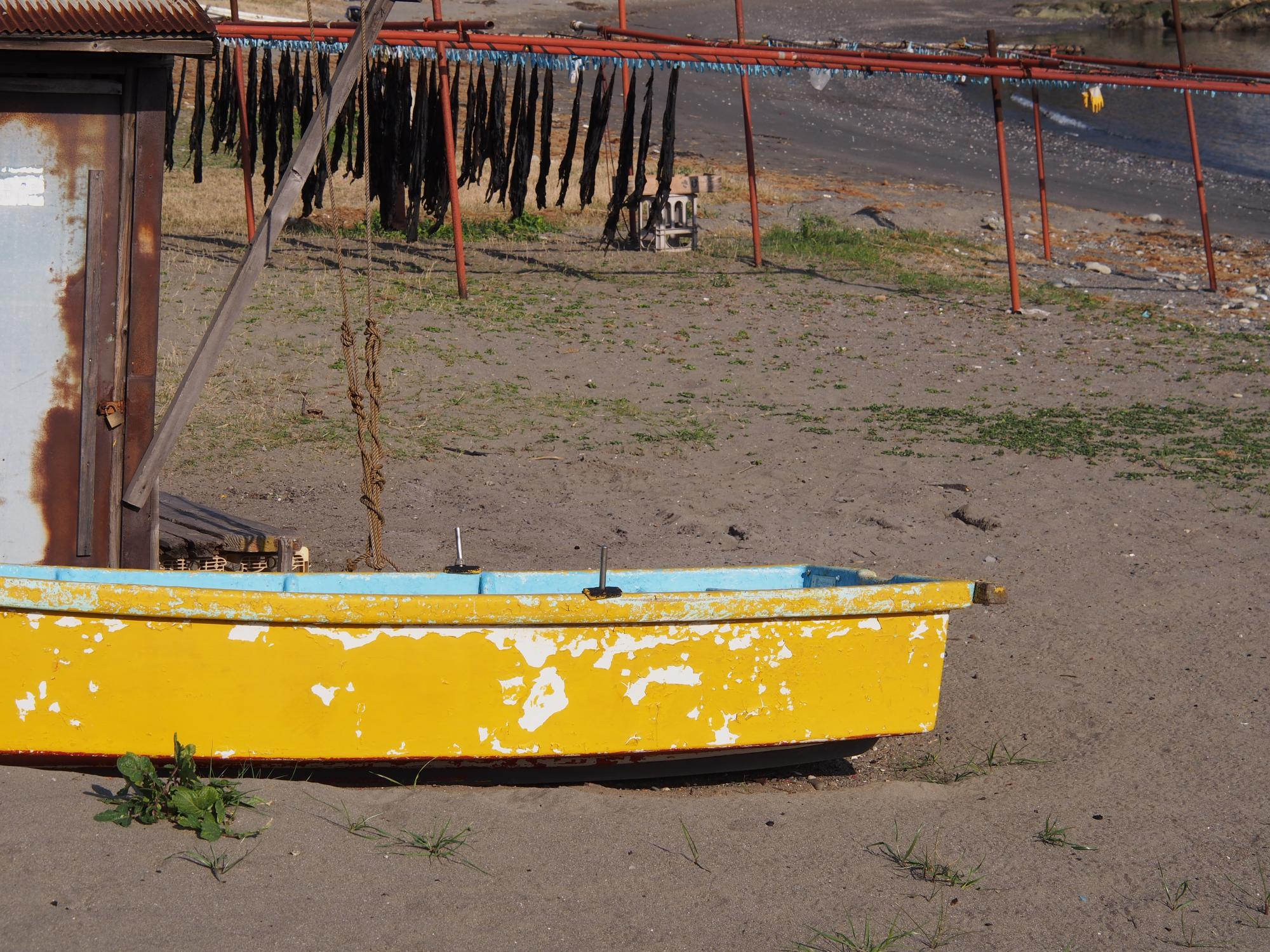 P3170052_ボート