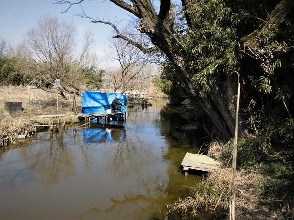 4 17.2.17 ママチャリング古尾谷神社→びん沼公園  (141)