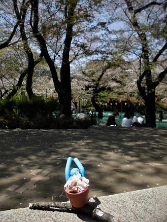 1 17.4.14 モダンアート展⇒花見⇒新橋 (69)