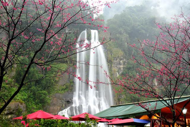 桜と滝(2)