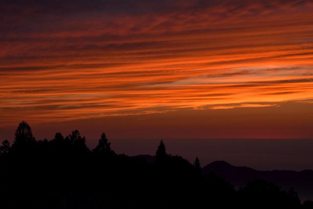 阿里山の夕暮れ(8)