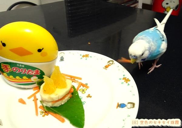 9歳の誕生日ケーキ 空色のセキセイ珠霞