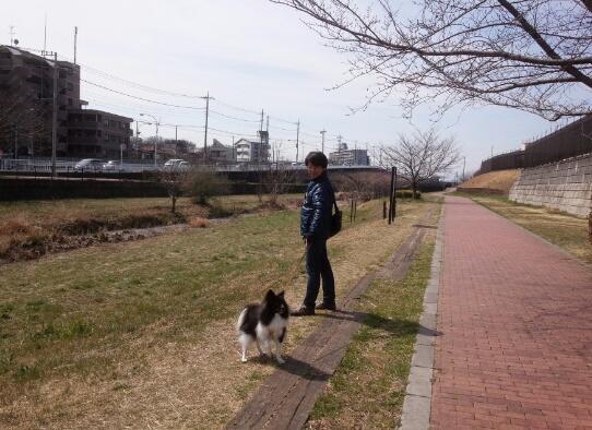 moblog_b9172d91.jpg