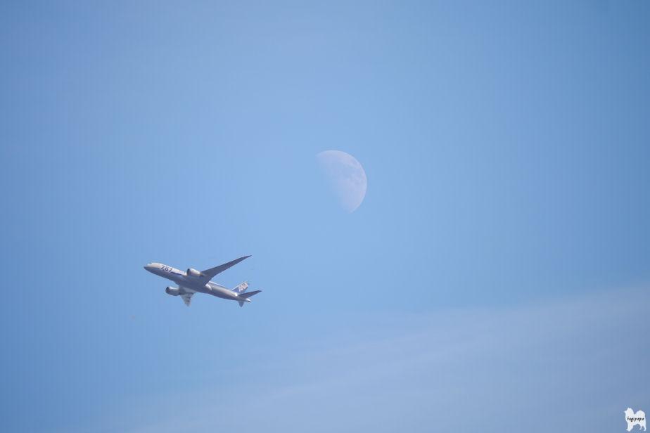 昼の月と飛行機 合成