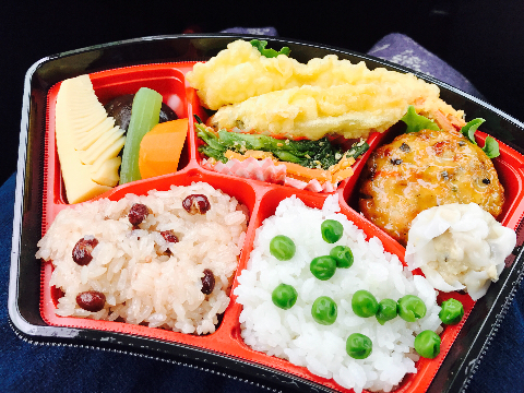 mainichi_ohanami2.jpg