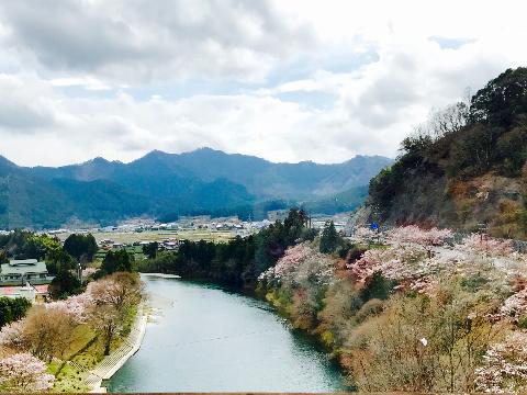 ohanami_dai1kaime1.jpg