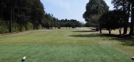 13成田の森