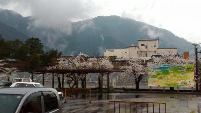 駅から見える弥彦山